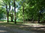 Mittagspause im Tiergarten